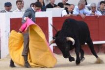 Journées taurines de Béziers...